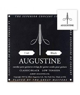 Augustine Black Bassa Tensione