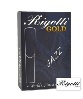 Rigotti Gold 2 Medium Sax Contralto