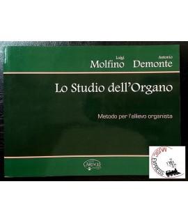 Molfino, Demonte - Lo Studio Dell'Organo