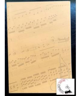 Quaderno di Musica - 8 Pentagrammi Grandi, 32 Pagine - Serie Studio
