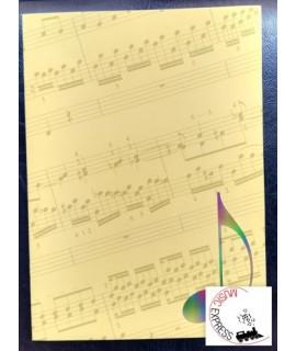 Quaderno di Musica Serie Concerto - 12 Pentagrammi, 32 Pagine